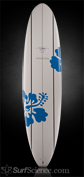 Surftech Yater - Fun Board